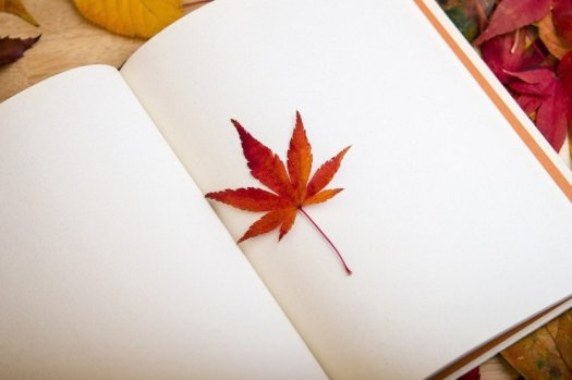 maple-leaf-in-open-book